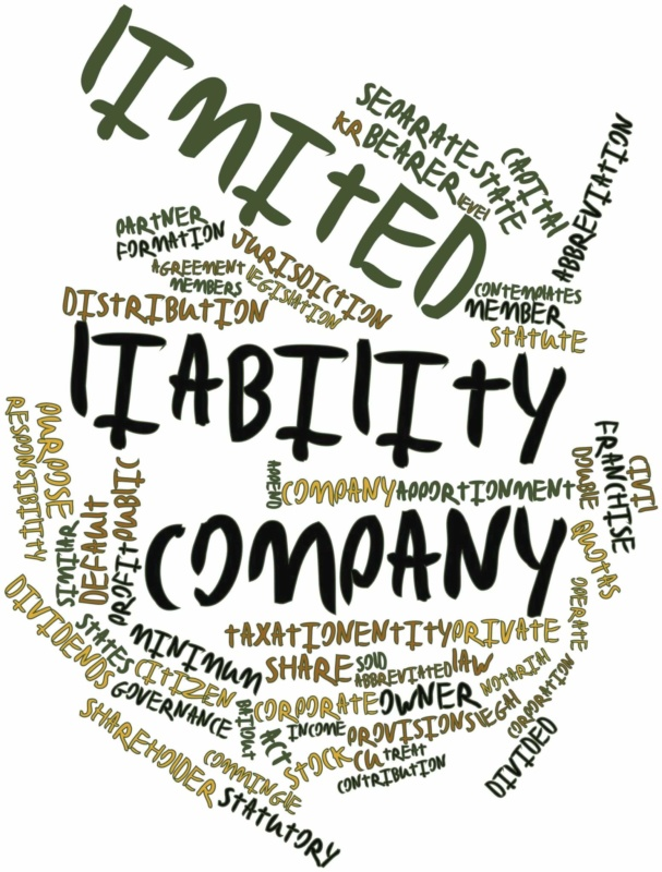 Llc55 limited liability company act illinois file#